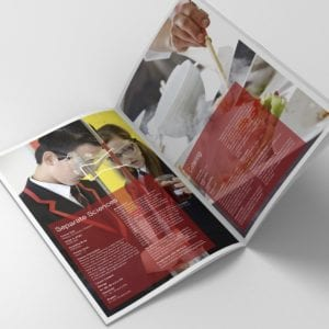 Arrow Vale Academy Curriculum Booklet | Portfolio | Blackberry Design